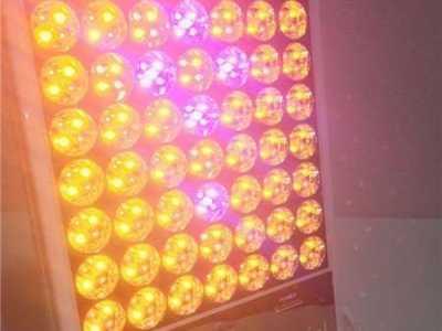 日本大排灯有效果吗 exideal大排灯经期可以用吗
