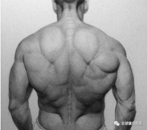杰斯斯坦森的背部 叫杰森斯坦森的背