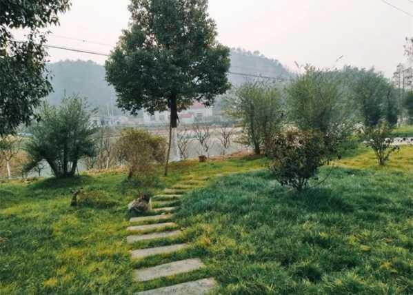 余姚马渚风景照片